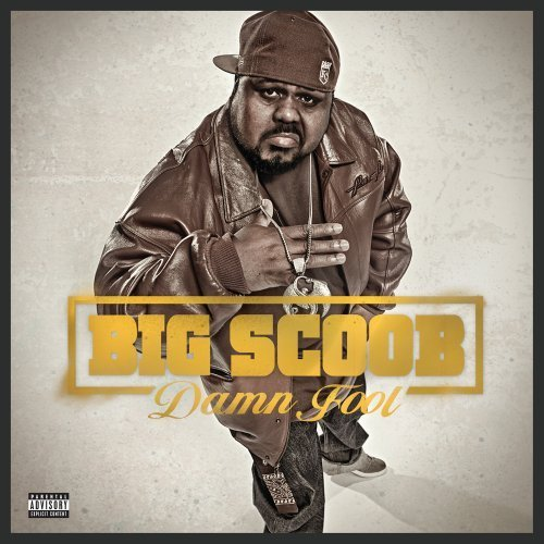 Big Scoob Damn Fool album cover art